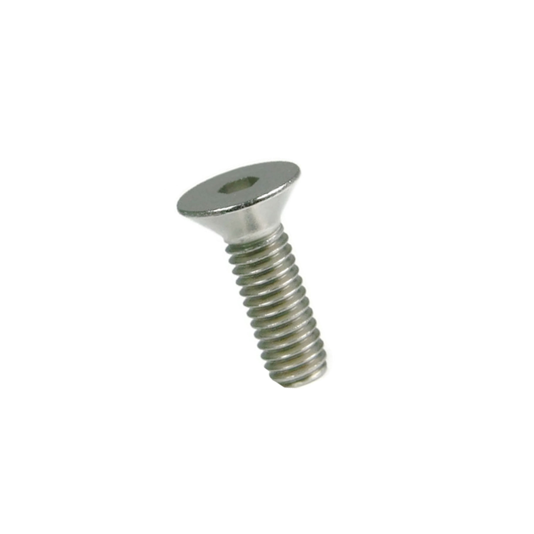 Stainless Steel Screw 1/2